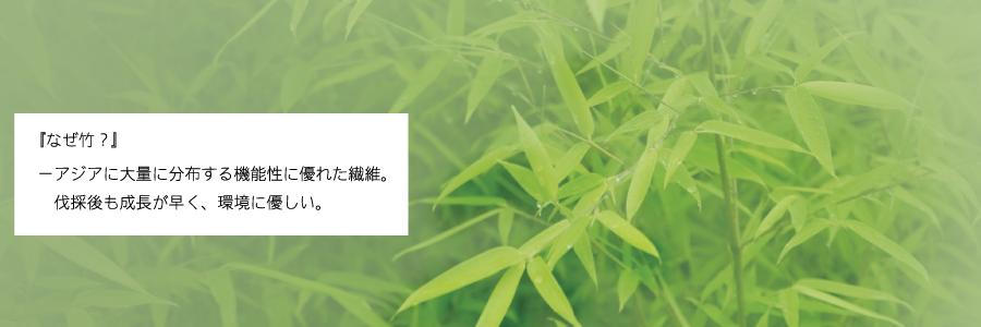 『なぜ竹?』ー新素材バングロに使用しているのは、アジアに大量に分布する機能性に優れた繊維。伐採後も成長が早く、環境に優しい。